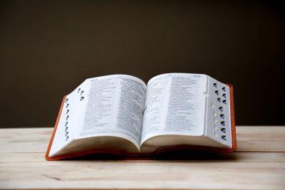Teksten-voor-trainers-Paula-Brummelkamp-blog-hoe-graag-lees-jij-een-woordenboek